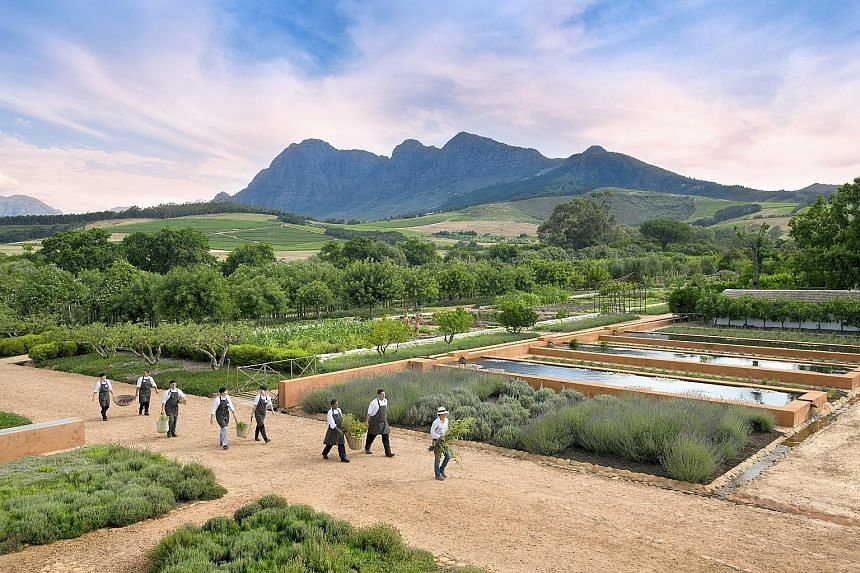 Visit a historic farm (left) on chef Dan Kluger's South African food tour, which covers Cape Town, the Cape Winelands and Kruger National Park.