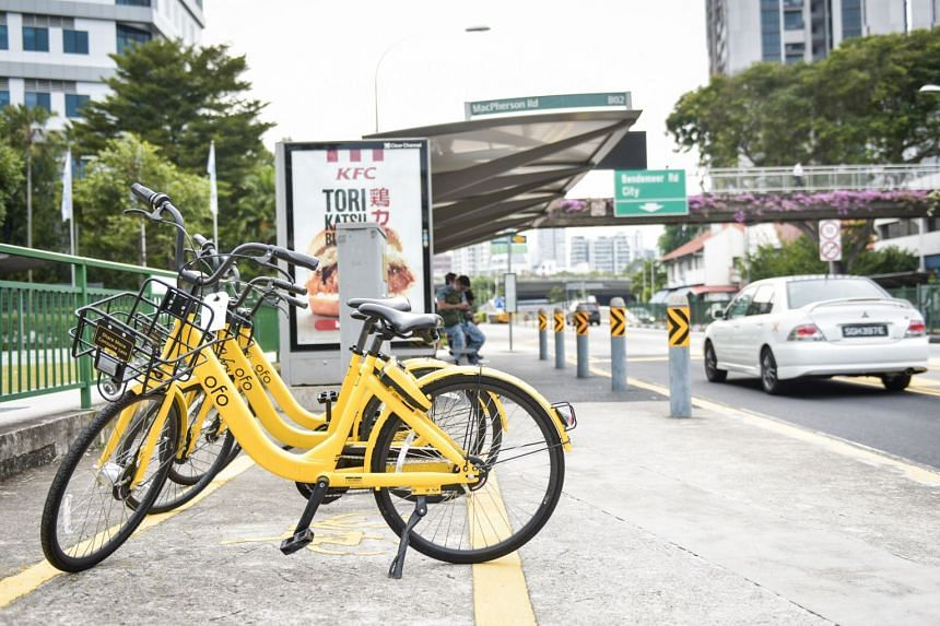 Ofo bikes in newly painted parking spots beside bus stops.