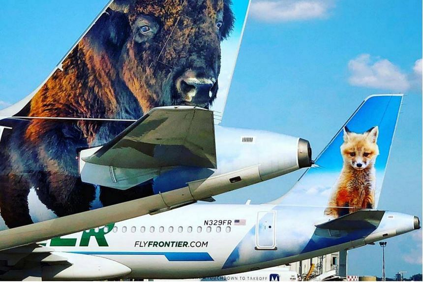 A Frontier spokesman said in a statement that the passenger had alerted the airline that she would be bringing an emotional-support animal on the flight but did not mention it was a squirrel.