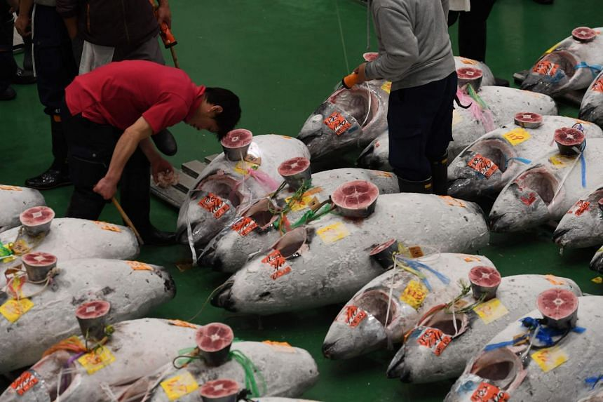 Buyers, workers and auctioneers attend the first tuna auction at the new Toyosu fish market in Tokyo on Oct 11, 2018.