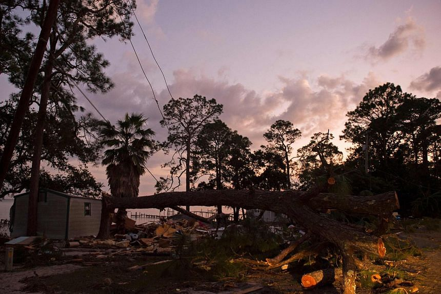 Hurricane Michael struck Florida's north-west coast near the small town of Mexico Beach on Oct 10, 2018,  with top sustained winds of 250kmh, pushing a wall of seawater inland.