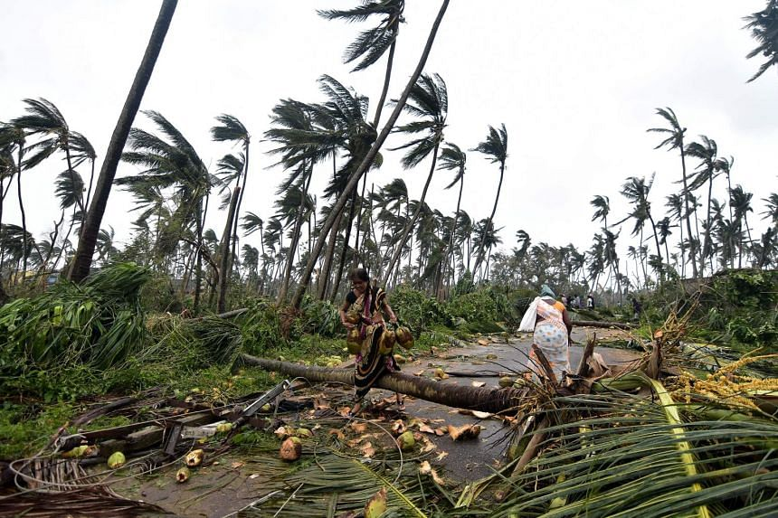 Indian women cross over fallen palm trees after heavy winds brought by Cyclone Titli struck the area in Barua village on Oct 11, 2018.