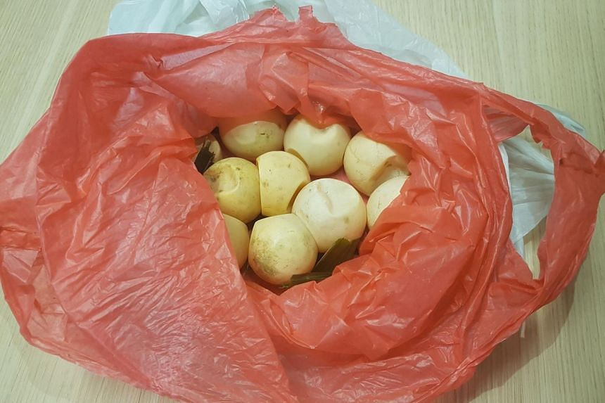 The smuggled marine turtle eggs, which were meant for personal consumption, were packaged as snacks and concealed within the baggage of travellers.
