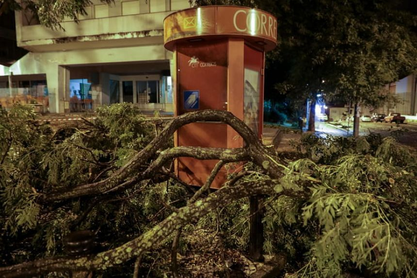 At least 1,000 trees were uprooted, mainly in coastal towns north of Lisbon where Storm Leslie first reached land, hitting power lines and blocking roads.