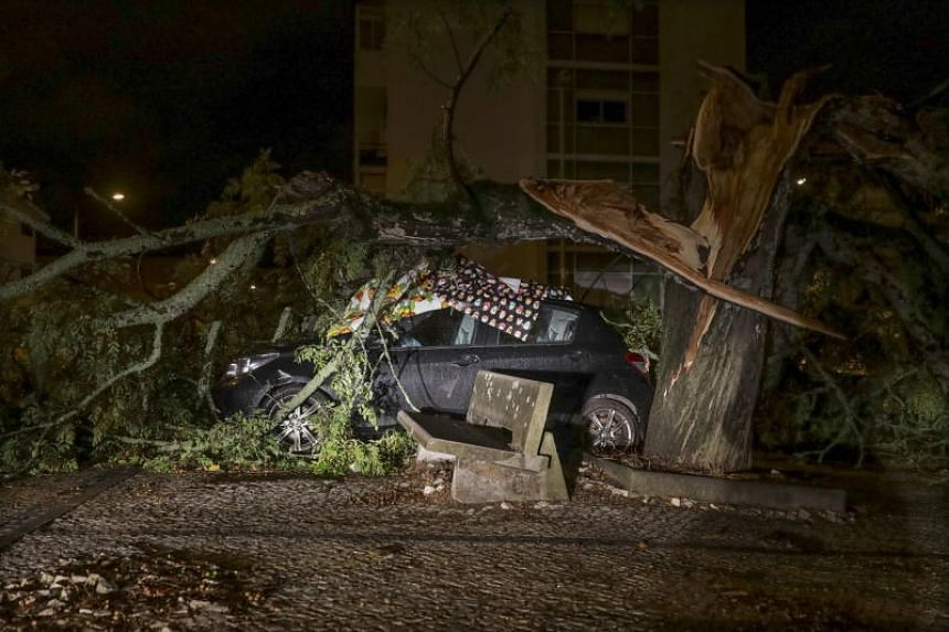 A view of a damaged car hit by a fallen tree after the passage of Storm Leslie in Coimbra, central Portugal, on Oct 14, 2018.