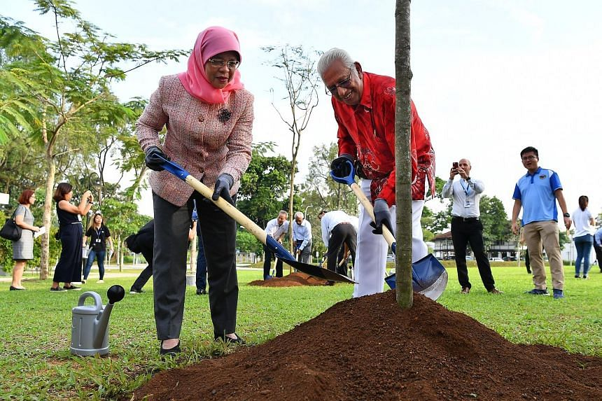 One of the conserved colonial bungalows at Seletar Aerospace Park. The works to refurbish the 13 bungalows are expected to be completed next year. President Halimah Yacob planting a flame of the forest tree with Shera chairman Percival Jeyapal at the