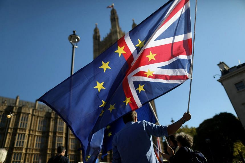 An anti-Brexit protester waves a flag opposite the Houses of Parliament in London, Britain, on Oct 9, 2018.