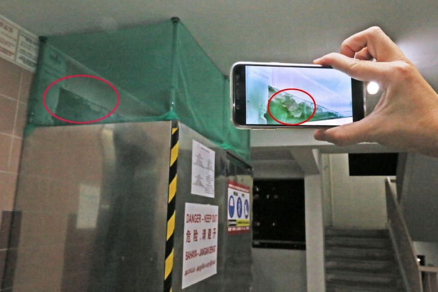 A resident of Block 729 Woodlands Circle saw the wrapper stuffed in a gap between the metal frame of the lift and the wall in both the 10th and 11th floors of the block in August.