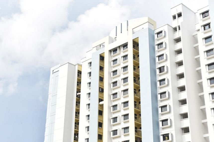 The figure comprises mainly the gross loss on the sale of flats, disbursement of CPF housing grants and the expected loss for flats that are currently under development.