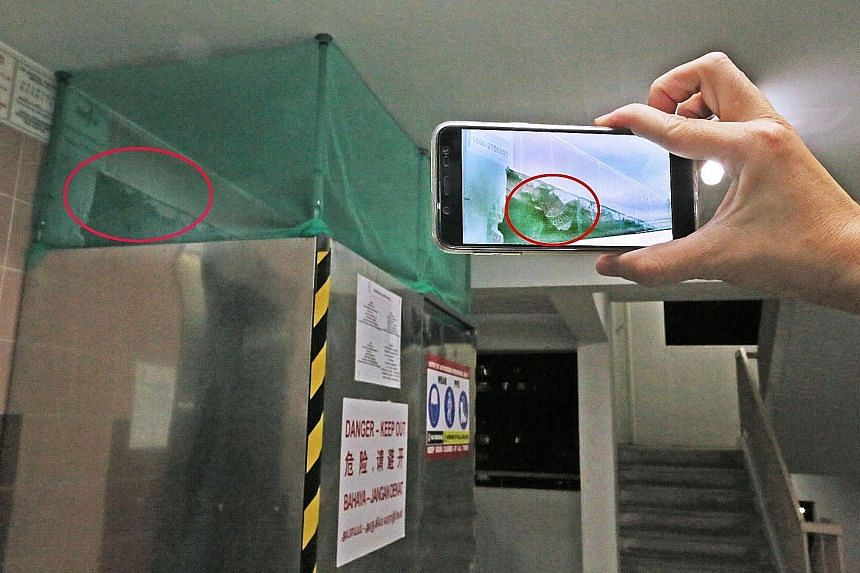 A resident of Block 729 Woodlands Circle saw paper wrappers stuffed in a gap between the metal frame of the lift door and the wall during renovation works and was worried about the block's structural safety.