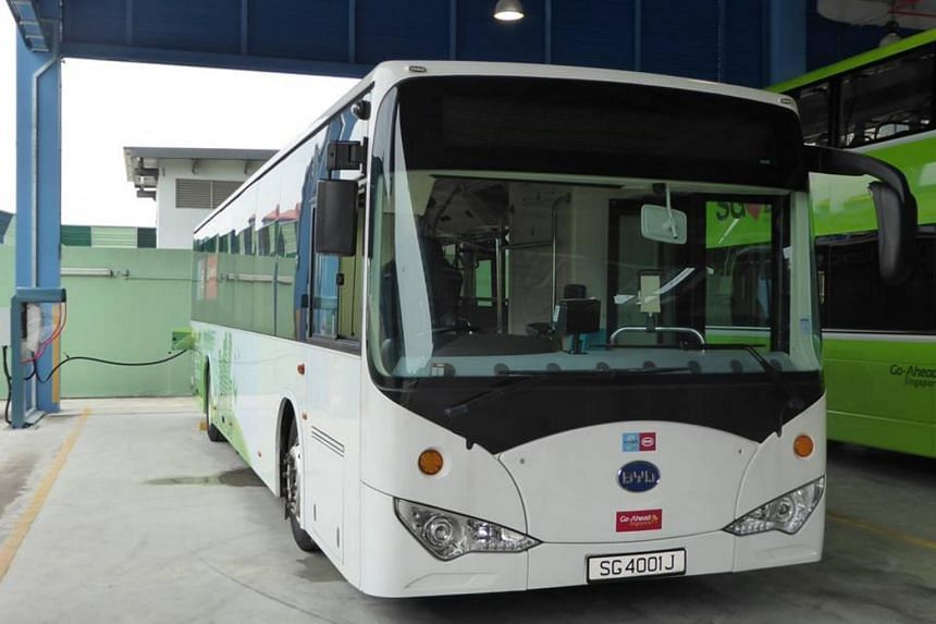 The buses will progressively arrive in Singapore from next year, with the final batch delivered in 2020.
