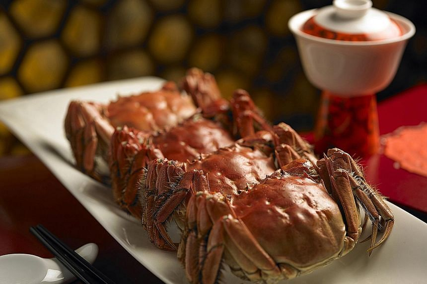 Hairy crab season is here again and Shang Palace's chef Mok Kit Keung has come up with a selection of dishes cooked with the delicacy (above).