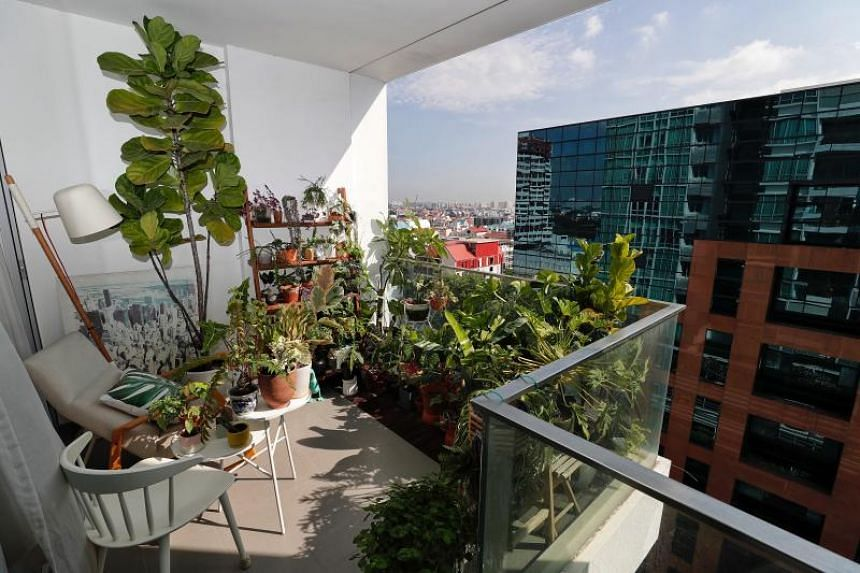 Mr Albert Pang's balcony decked with plants in his 764 sq ft condominium unit on Oct 24, 2018.