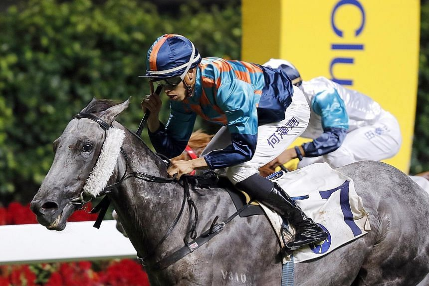 It won't take much for the grey Super Turbo to figure in Race 7 at Happy Valley tomorrow.