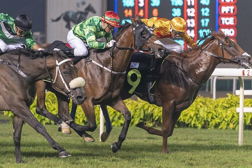 Apprentice jockey M Nizar driving $175 outsider Just Landed (No. 9) to beat the $14 favourite Toosbies (far left) by a head, with a short head to $331 long shot Another Show, in Race 2 at Kranji last night.