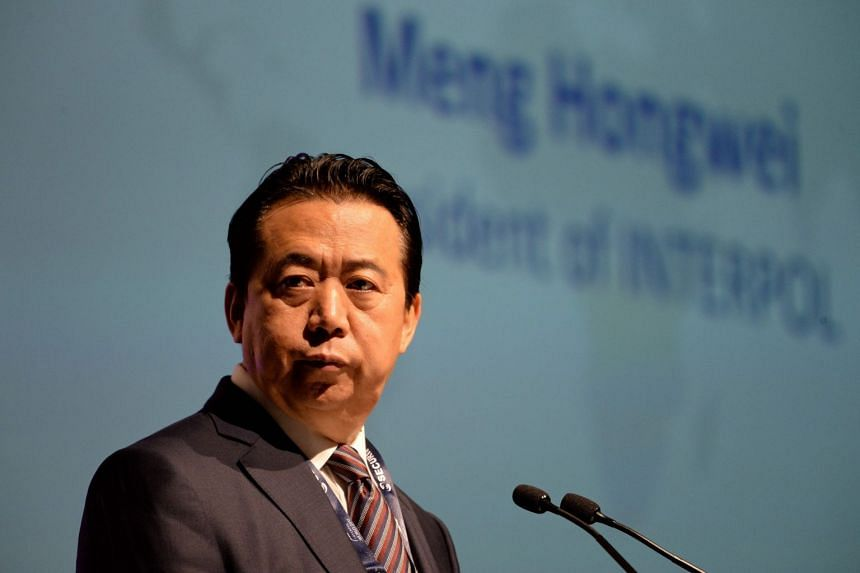 File photo of former Interpol chief Meng Hongwei, who has now been dismissed from the foreign affairs committee of the Chinese People's Political Consultative Conference, an advisory committee to the Chinese government.