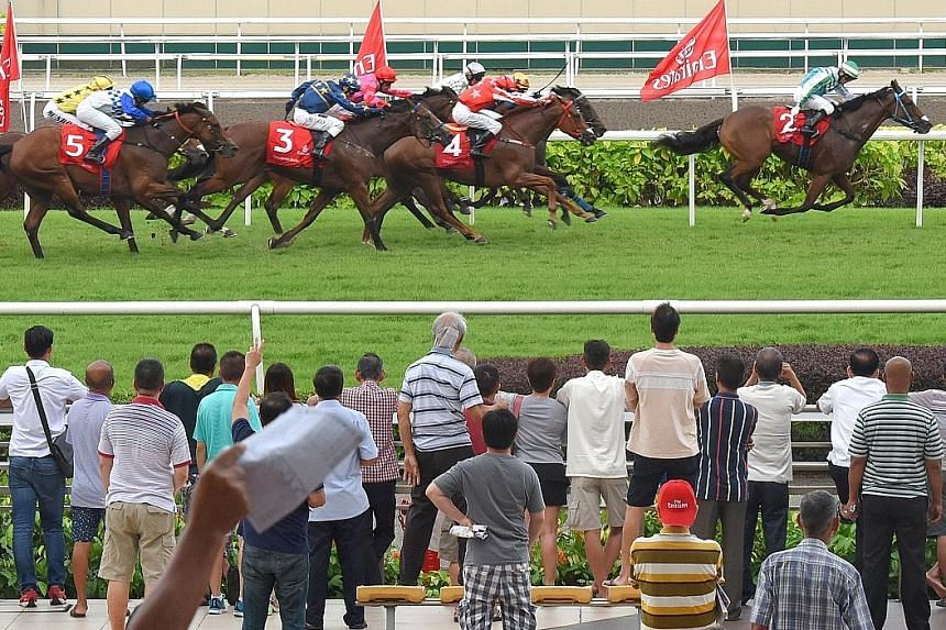 Daily horse-racing operations and the Turf Club in Kranji will remain under the Singapore Turf Club, while betting functions will be run by Singapore Pools.