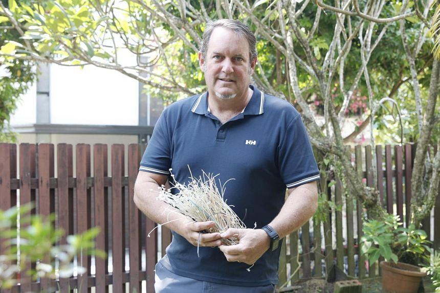 Telecommunications consultant Bill Bremner, 54, gathered 213 translucent nylon strings that come from grass cutting machines in just four hours.