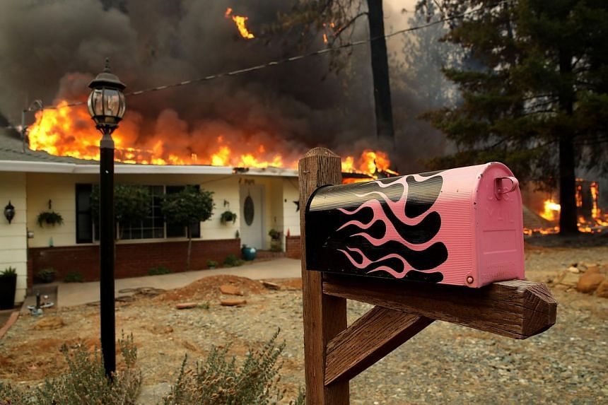 Driven by high winds and dry conditions, the blaze dubbed the Camp Fire swept through the town of Paradise, California, on Nov 8, 2018.