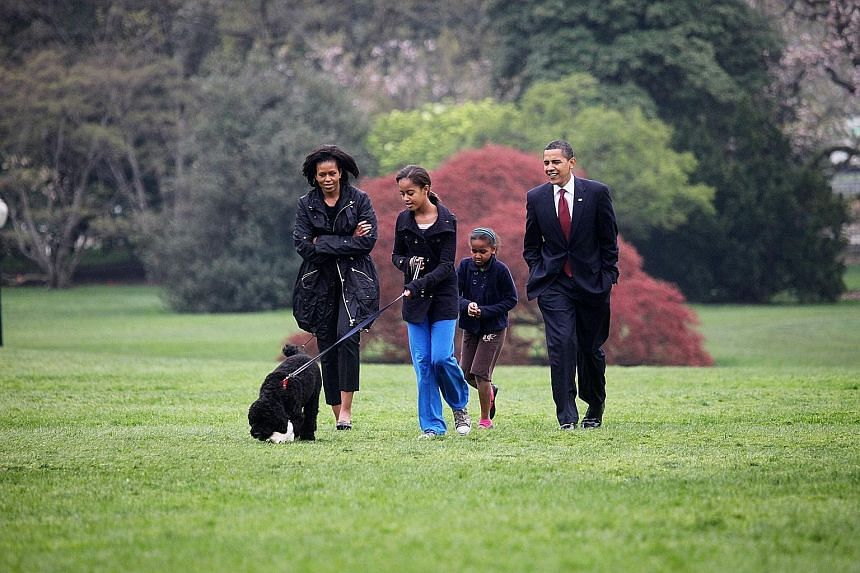 Above: Then US First Lady Michelle Obama, then President Barack Obama and their children, Malia and Sasha, with their dog Bo at the White House in 2009. In her book, Mrs Obama writes of how fertility treatments allowed her to conceive her daughters.