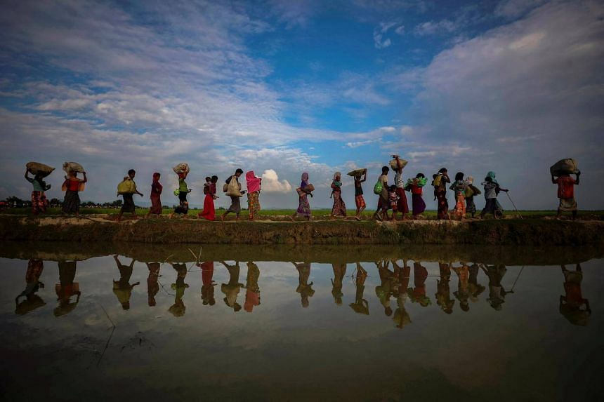 File photo of Rohingya refugees walking along an embankment next to paddy fields after fleeing from Myanmar into Palang Khali, near Cox's Bazar, Bangladesh, on Nov 2, 2017.