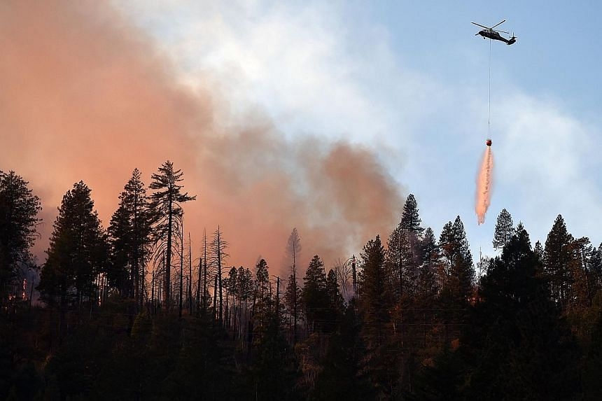 A helicopter dropping water on a burning ridge in the Feather River Canyon, east of Paradise, California, on Sunday. The remains of a luxury home stand amid burnt-out tree trunks in the beachside community of Point Dume in Malibu, California, on Sund