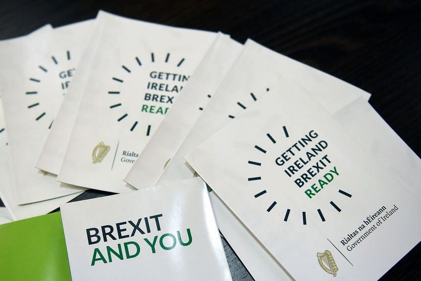 At issue is the vexing problem of how to avoid border checks between British Northern Ireland and the Republic of Ireland after Brexit enters into force on March 29, 2019.