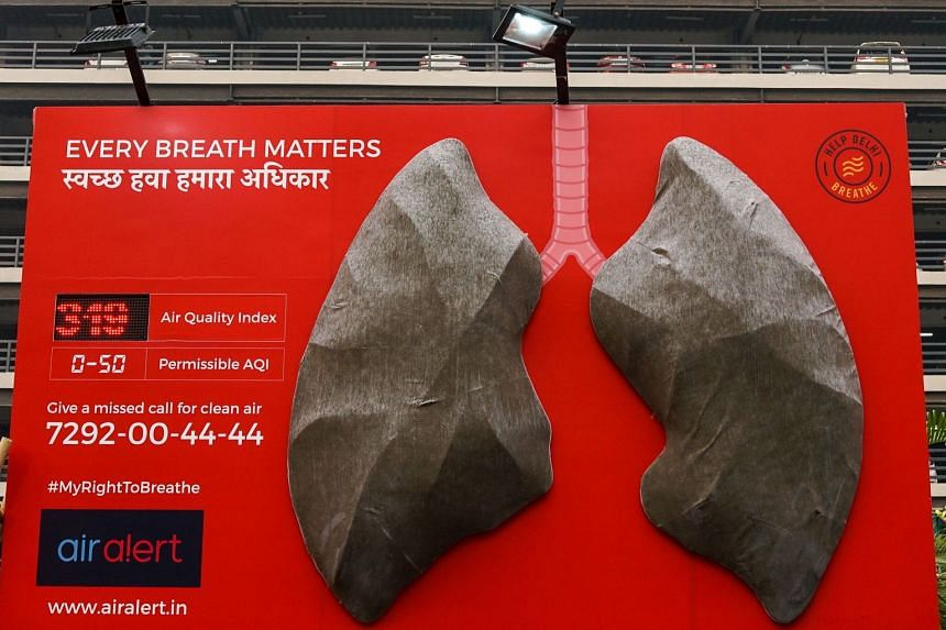 An installation depicting a giant set of lungs is pictured at Sir Ganga Ram hospital in New Delhi, on Nov 13, 2018.