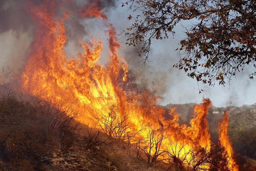 The wildfire, which continues to rage, is the most destructive fire in California history.