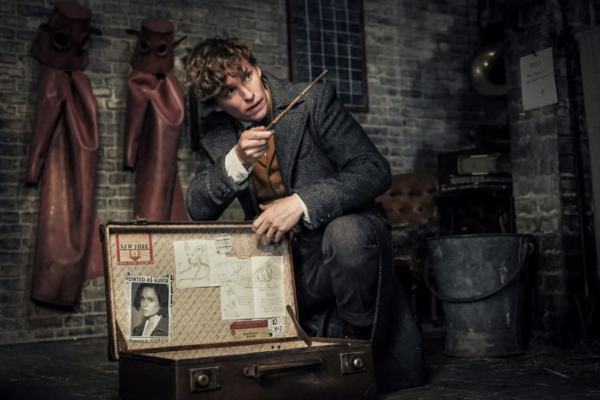 A good portion of Fantastic Beasts: The Crimes Of Grindelwald's time is also spent in fan-service segments, with flashbacks to Hogwarts, and the recruitment of Dumbledore.