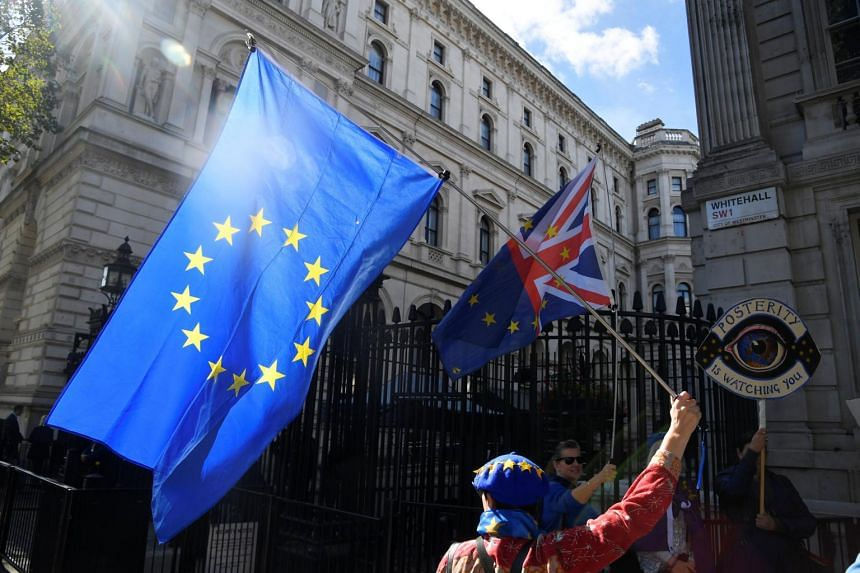 An anti-Brexit demonstrator holds a flag outside Downing Street in London on Sept 24, 2018.