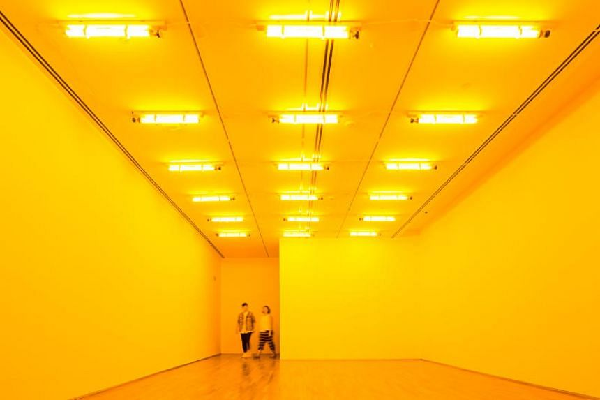 Danish-Icelandic artist Olafur Eliasson's Room for one colour (1997), a space illuminated by mono-frequency lamps that suppress all colours except yellow and black.