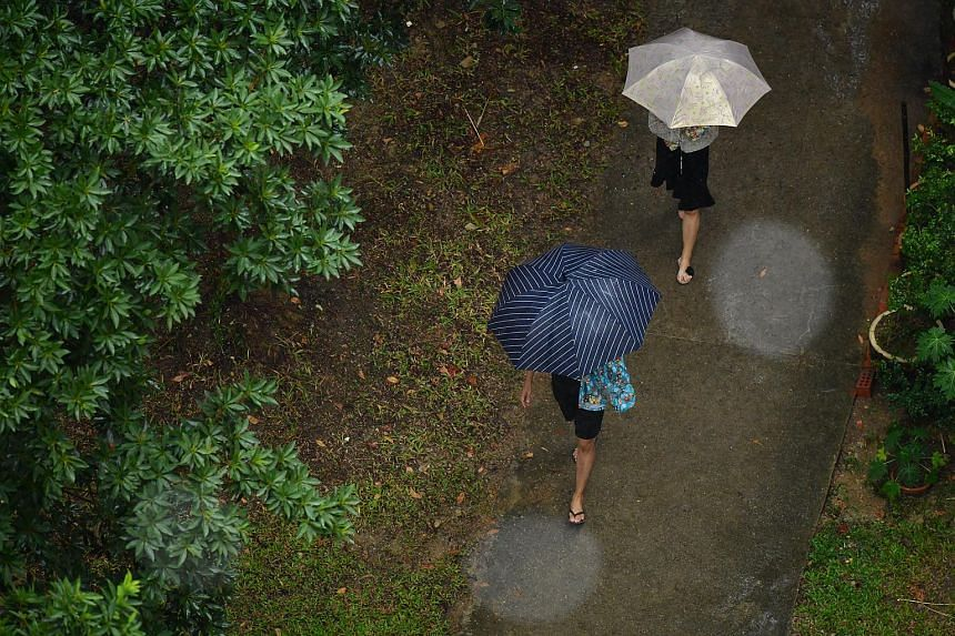 The overall rainfall for this month is expected to be above normal, said the Meteorological Service Singapore.