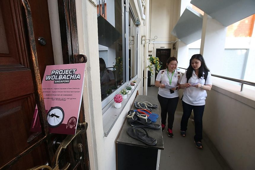 NEA staff distributing brochures to residents in Tampines in February to inform them about the second phase of Project Wolbachia and the release of Wolbachia-infected mosquitoes at HDB blocks and on higher floors. The mosquitoes were also released mo