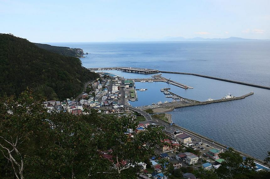 A view of the town of Rausu from the Rausu Kunashiri Observatory Deck. The island of Kunashiri (Kunashir), one of four groups of islands administered by Russia and claimed by Japan, is located 25km across the strait from Rausu and can be seen in the