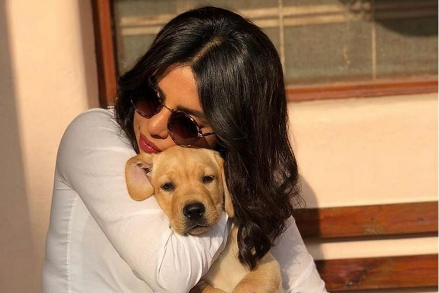 Priyanka Chopra poses with her dog, Diana. Among items she has listed that she would like to receive, Chopra has requested a raincoat for her dog.