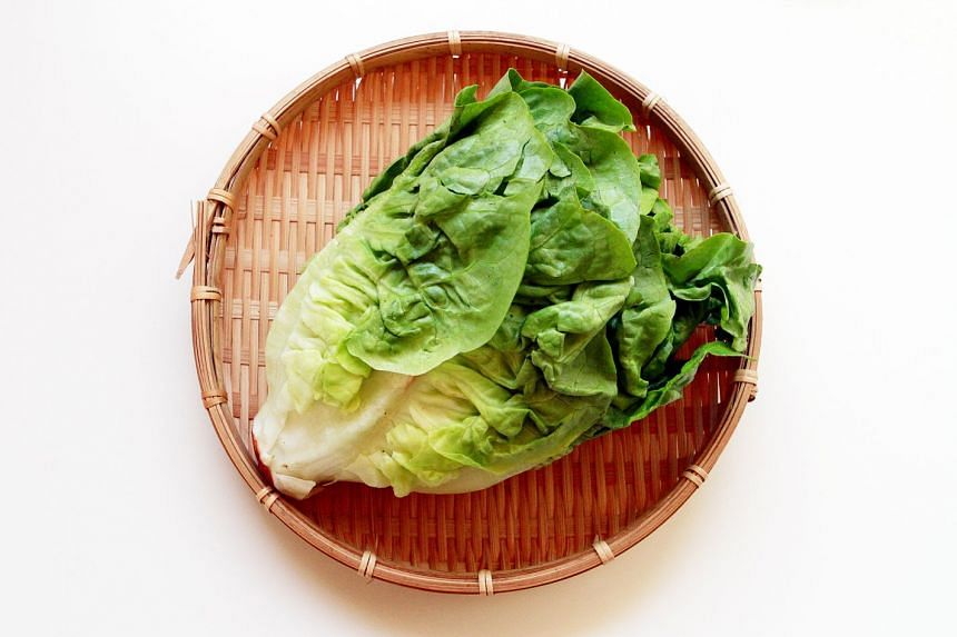 Romaine lettuce like that above sickened 32 people in 11 US states with the E. coli bug.