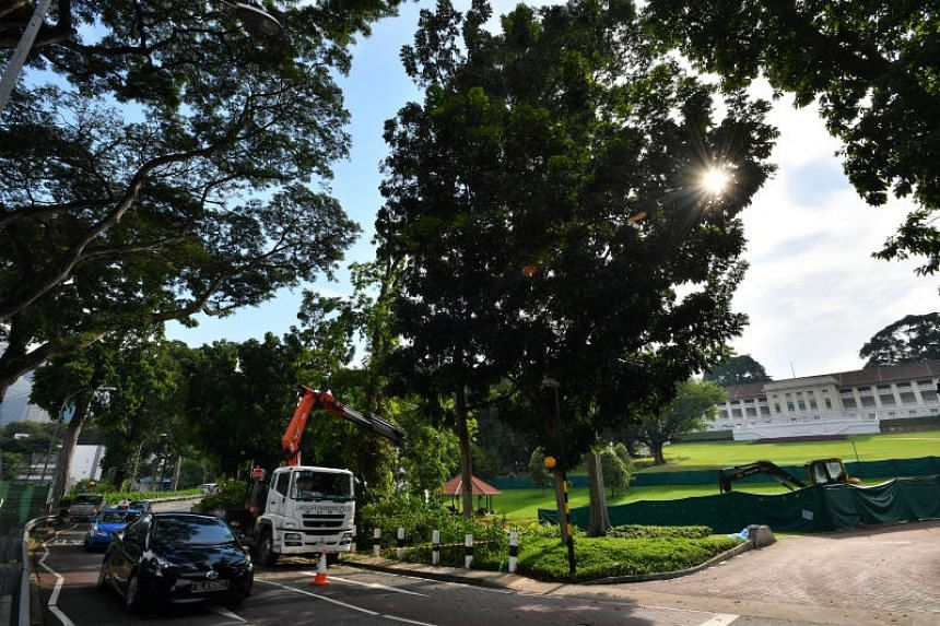 The new walkway will connect Fort Canning Park's Farquhar Garden and Fort Canning Green seamlessly, and create a pedestrian-friendly environment within the park.