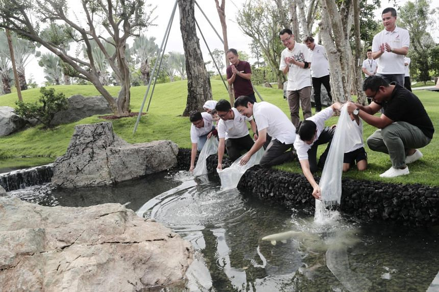 Minister for National Development Lawrence Wong and Gardens by the Bay's 50 millionth visitor releasing koi into a pond at Serene Garden on Nov 24, 2018.
