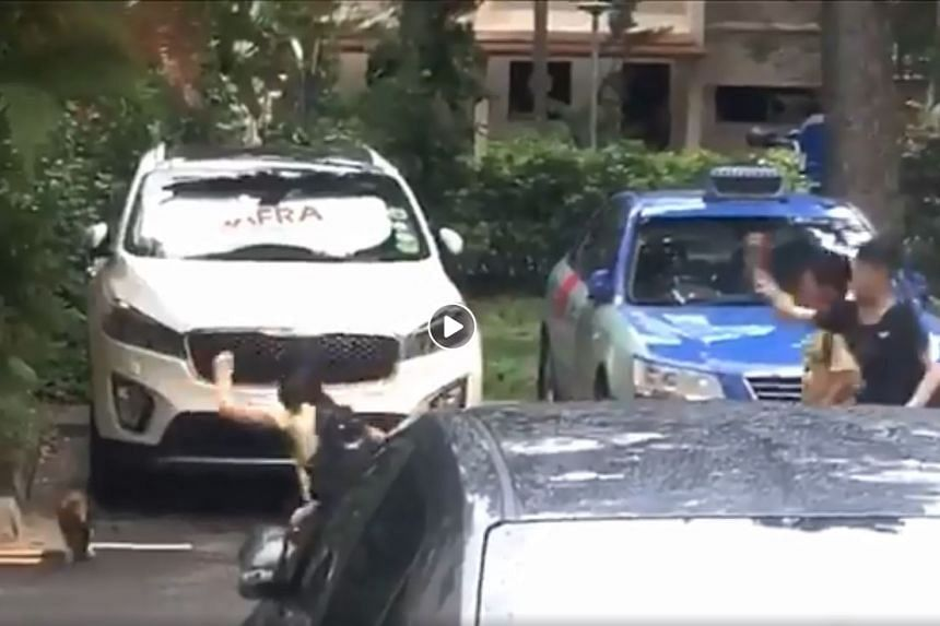In the video, the three children appear to chase after the cat and throw an object at it. PHOTO: SCREENGRAB FROM FACEBOOK / ROADS.SG