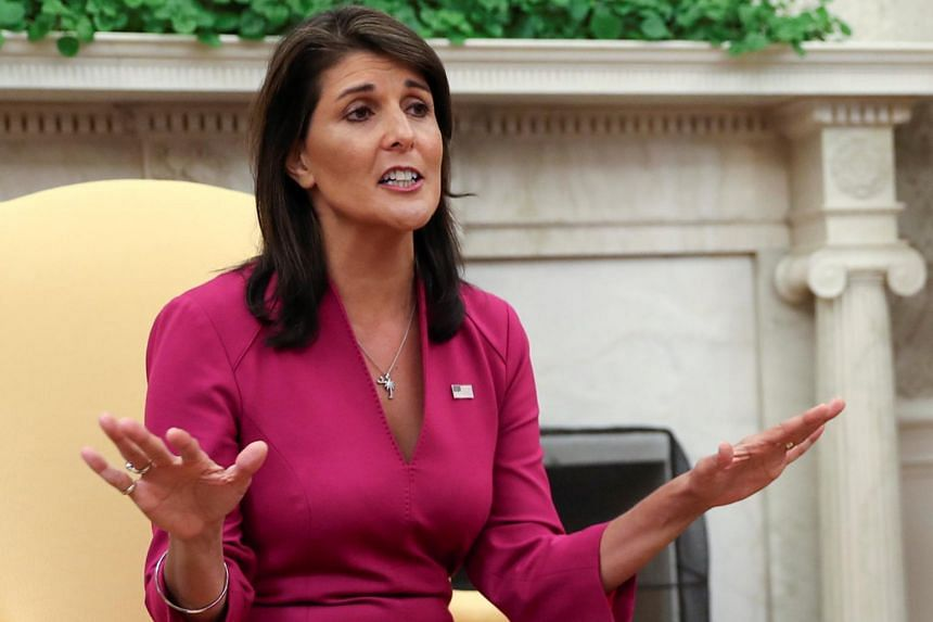 US ambassador to the UN Nikki Haley said the UN Security Council will hold an emergency meeting on Nov 26, 2018.