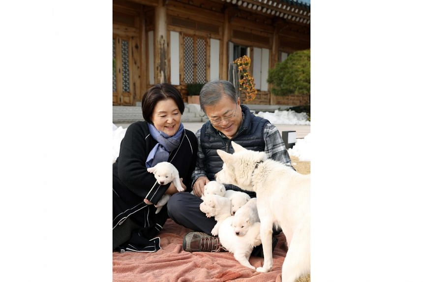 President Moon Jae-in and first lady Kim Jung-sook cuddle puppies, born to female dog Gomi that Mr Moon received as a gift from North Korea, in Seoul, on Nov 25, 2018.