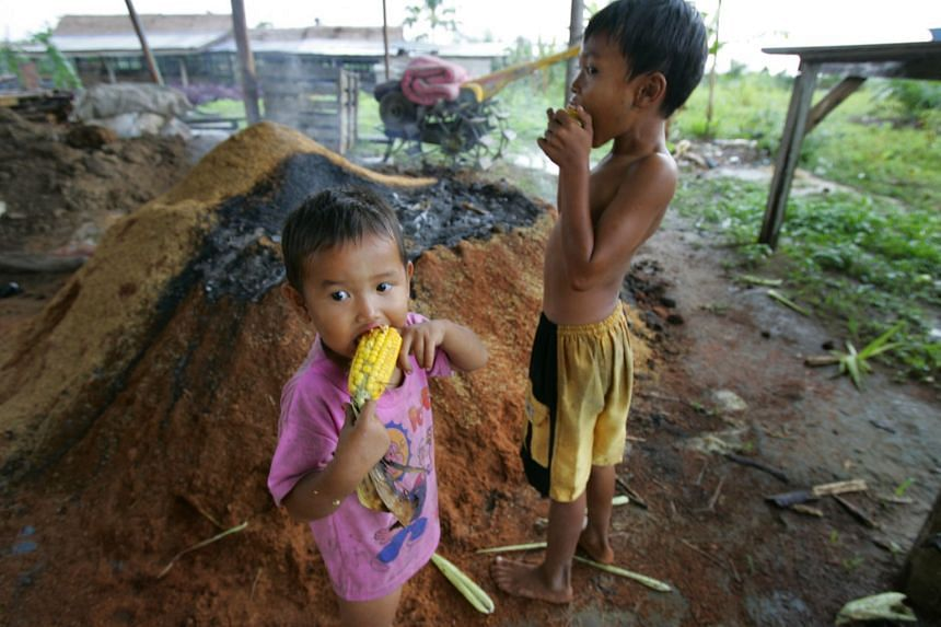 According to the report, countries like Cambodia, Indonesia, Vietnam, Malaysia and Myanmar have significant cases of stunted children and anaemic women.