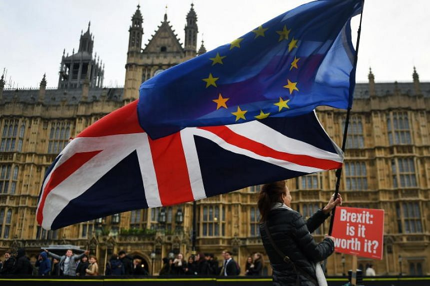 Pro EU protesters demonstrate outside Parliament in London, Britain, on Nov 29, 2018.
