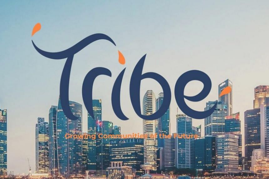 Tribe Accelerator programme will focus on helping start-ups develop products such as apps or service solutions, especially in fields that lend themselves to wide adoption in society.