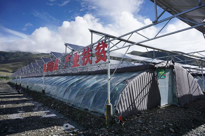 A one megawatt photovoltaic-and-greenhouse project in Qonggyai county of Shannan prefecture-level city is an investment by the local government that will pay out 3,000 yuan a year to each of 120 villagers.