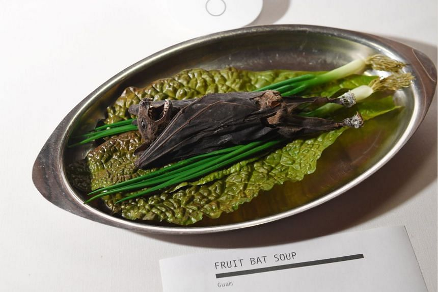 An exhibit of fruit bat soup from Guam at the Disgusting Food Museum in Los Angeles on Dec 6, 2018.