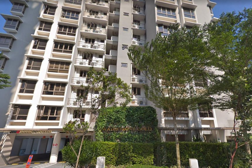 The twin boys were wrestling by the poolside of the Waterfront Gold condominium in Bedok Reservoir Road when the older boy slipped and fell into the deep end.