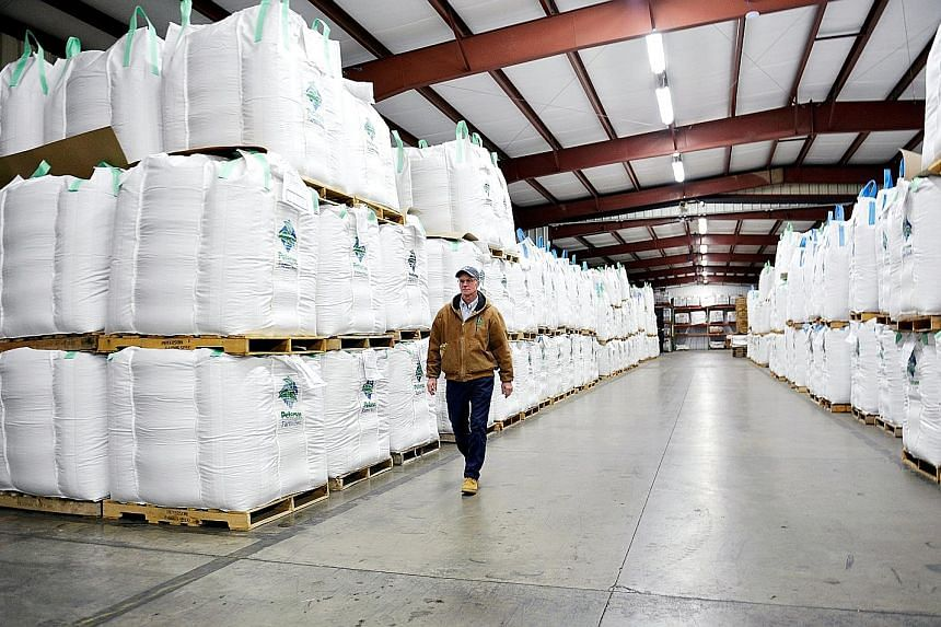 American soya bean farmers are now faced with the problems of low prices, no buyers for their crop, high storage costs and a short storage life of the beans. The reported soya bean purchases and tariff cuts to US automobiles as well as news that Chin