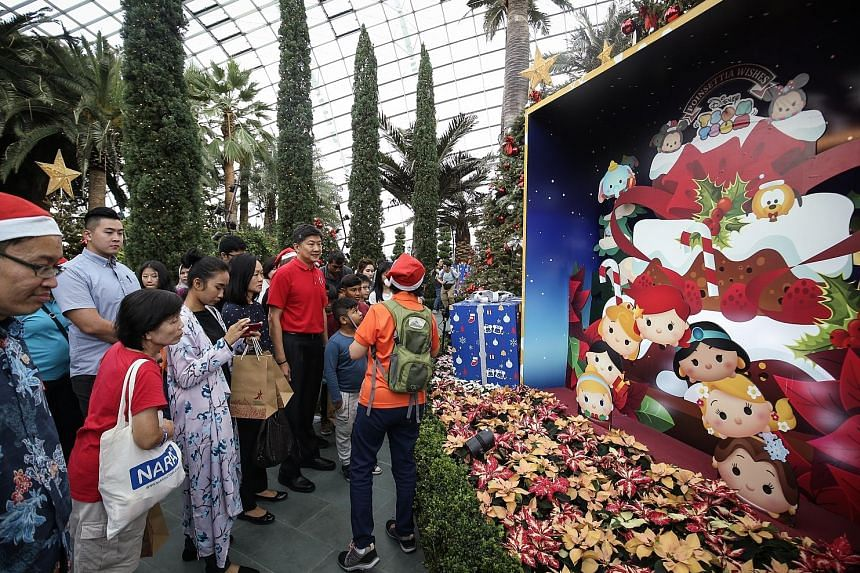It's a dome full of flora and festive cheer. Amid the colourful Christmas decorations and displays, National Trades Union Congress secretary-general Ng Chee Meng (in red shirt) spent yesterday morning with 350 less affluent union members and their fa